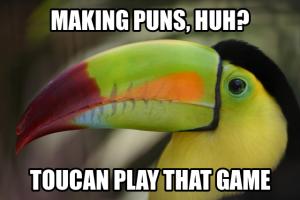toucan pun